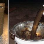 Чому і як треба робити компостний чай?