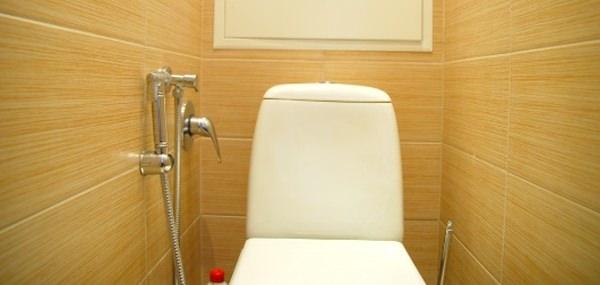 Для чего нужен гигиенический душ в туалете и как его установить