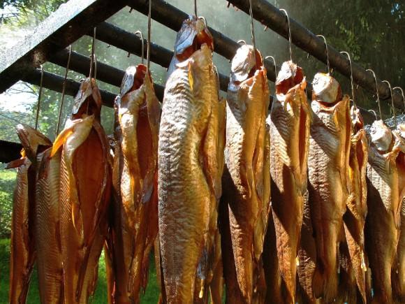 Функциональная коптильня холодного копчения для рыбы и мяса своими руками: как построить и вкусно приготовить