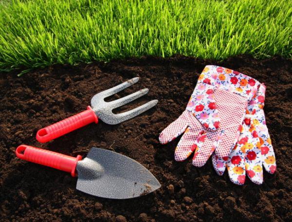 Как посеять газонную траву на дачном участке