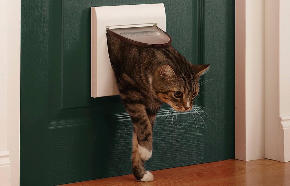 Как сделать дверцу для кошек и собак в двери