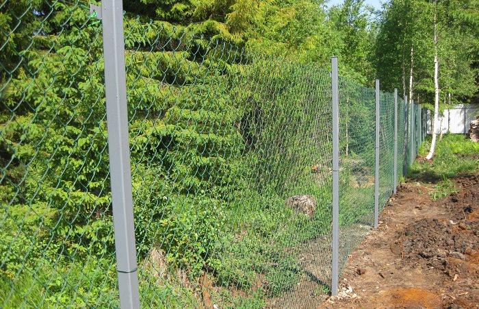 Сетчатый забор на даче — дешевое и практичное ограждение